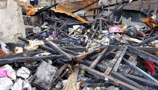 発災から1ヵ月・・・大規模火災被災地の今