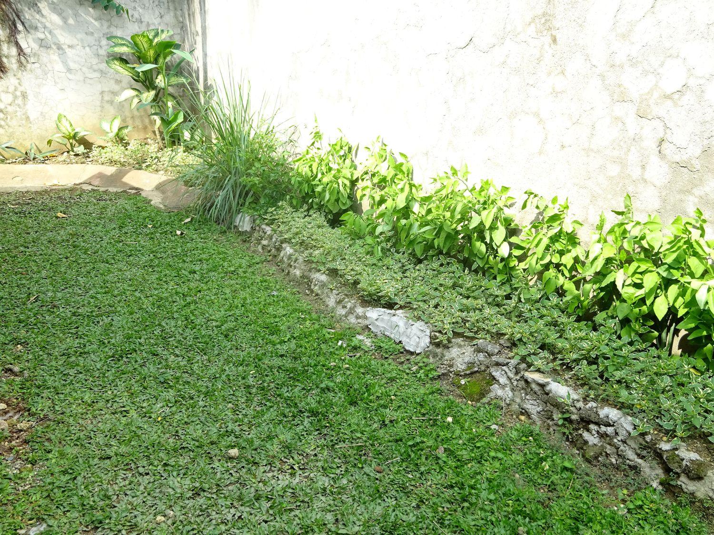 DSC03997