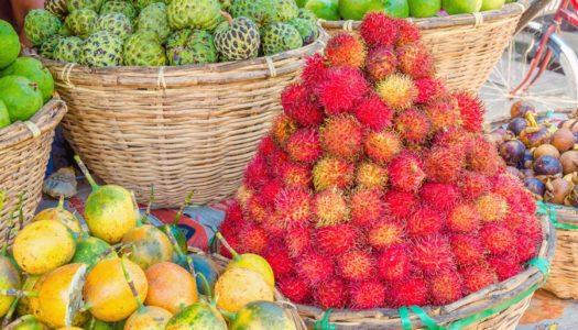 南国セブ島のおいしいフルーツを紹介!!
