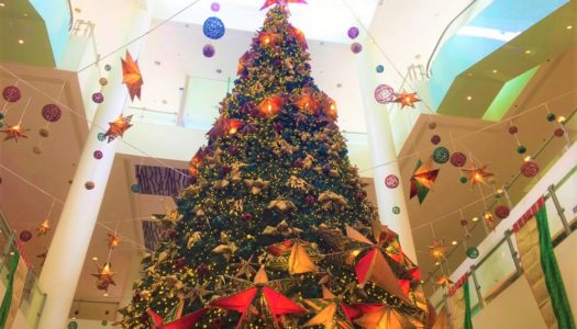 今年のクリスマスは節約!?